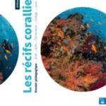 DOSSIER-RECIFS-CALAMEO.pdf