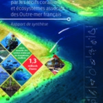 NAT16_Analyse economique IFRECOR Synthese des Outre-Mer.pdf