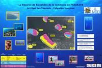 PF07_ poster AMP FAKARAVA_2007.jpg