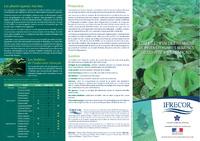 NAT10_Plaquette_herbiers_FR.pdf