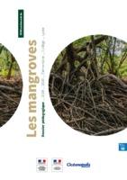 DOSSIER-MANGROVES-CALAMEO.pdf