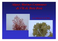 PF02_Bora_Bora_Presentation_Algues_2002.pdf
