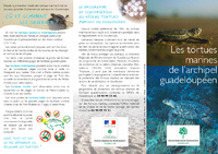 GUAD04_depliant _tortues_marines_fr.pdf