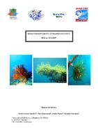 MAY07_etude_hydraires_2007.pdf