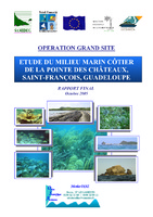 GUAD05_SAMIDEG_Chateaux_Rapport_Final_2005 .pdf