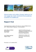 Rapport non-usage Guadeloupe V16.pdf