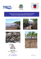 MAY04_Suivi_erosion_cotiere_mangroves_2004.pdf