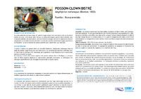 NC07_Fiches poissons_adultes.pdf