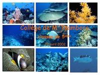 MAY02_collèges_la richesse du lagon.pdf