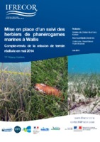 Job et al_2015_Rapport_mission_Herbiers_Wallis_2014.pdf