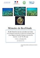 IE12_Rapport_de_stage_Europa.pdf