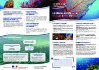Plaquette-reseau récif_pdf-compressed.pdf