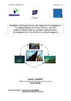GUADELOUPE Rapport hydrocarbures.pdf