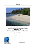 PF05_Bora_Bora_Diagnostic_plages_artificielles_2005.pdf